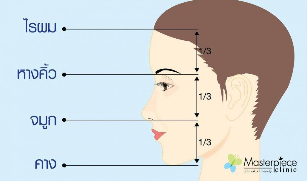 รูปแบบของใบหน้าที่ได้สัดส่วน