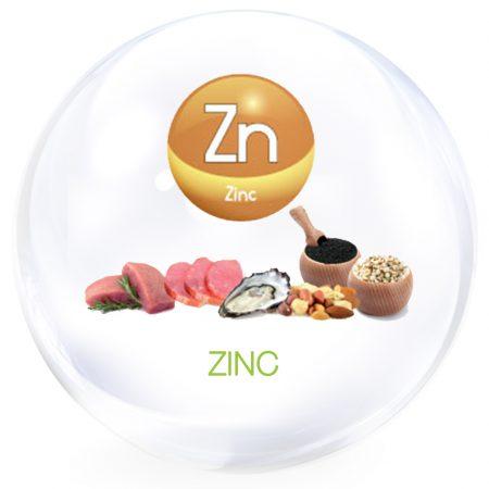 zinc-1040-x1040
